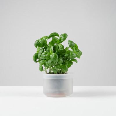 Pflanztopf Till Planter
