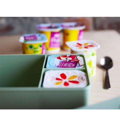 Lunchbox Bär | Grün