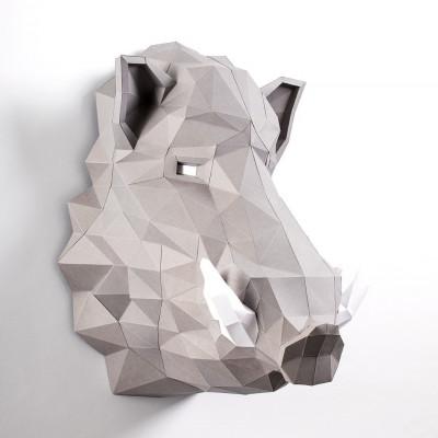 Boar Grey