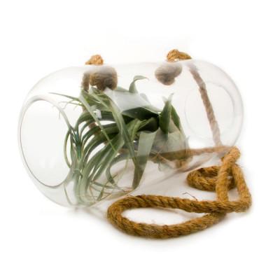 Bolsk Hanging Glass   Tube