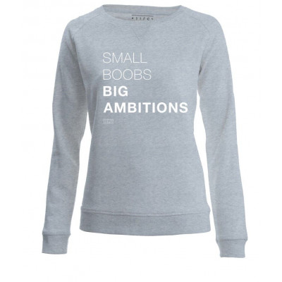 Small Boobs Big Ambitions | Long Sleeves Sweater Grey