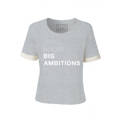 Small Boobs Big Ambitions | Short Sleeves Sweater Grey