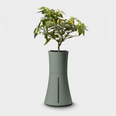 Selbstbewässerndes Hydrokultur-Pflanzgefäß Botanium   Lorbeergrün