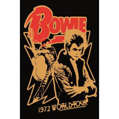 Poster Bowie World Tour | 30 x 40 cm