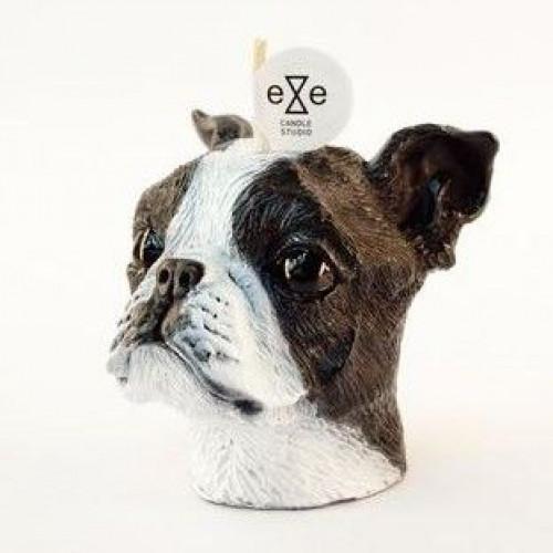 Candle Boston Terrier Painted   Vanilla & Caramel