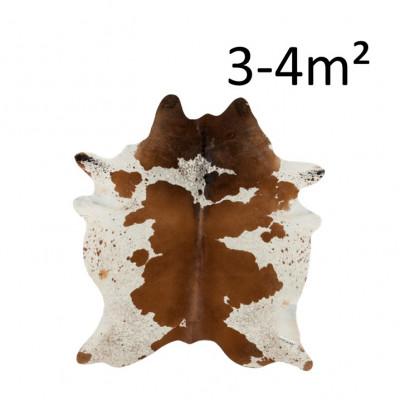 Kuhhaut 3-4M2 | Braun & Weiß
