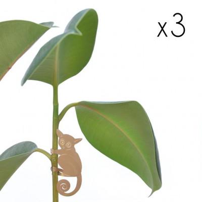 Plant Animals Set of Three | Panda / Koala / Bush Baby