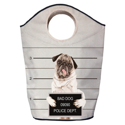 Storage Bag Bad Dog