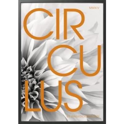 Circulus orange (C12)