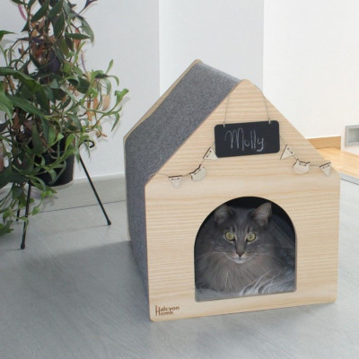 Cat House APAWTMENT