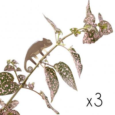 Plant Animals Set of Three | Sloth / Monkey / Chameleon