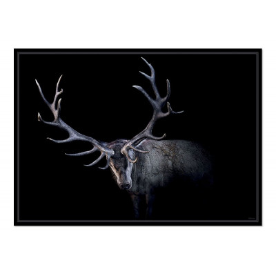 Poster Mr Antlers
