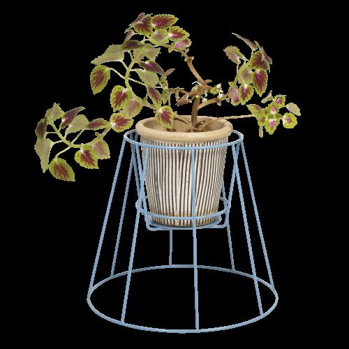 Cibele   Pflanzenstandtaube Blau-Klein