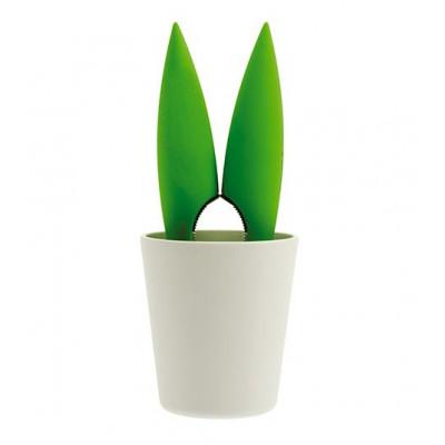 Corylus Nutcracker with Bowl | Green