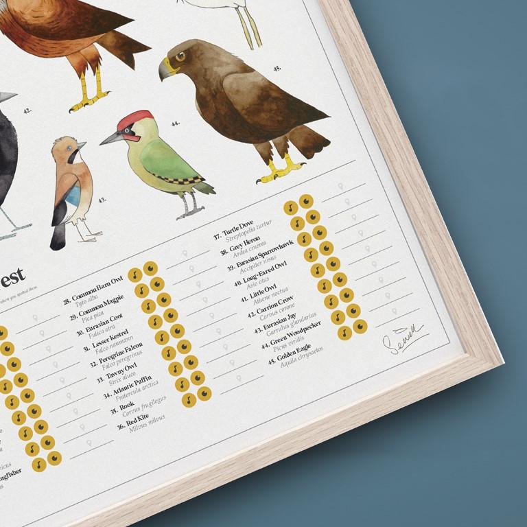Poster Der Chartologe   Gartenvögel