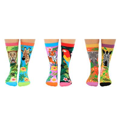 Damen Geschenkbox 6er Pack Socken Jungle Fever   37-42