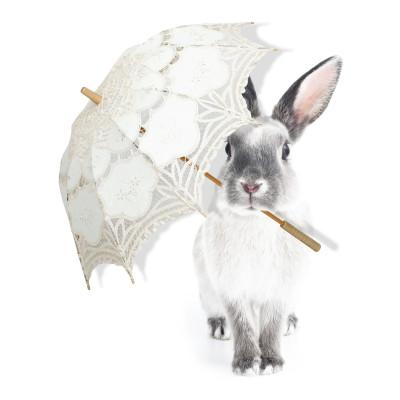 Wandaufkleber   Harry's Singing In The Rain