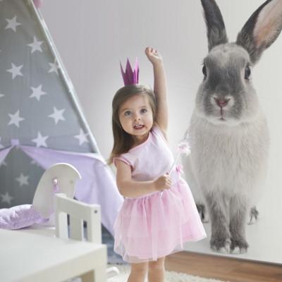Wandaufkleber   Kaninchen Harry
