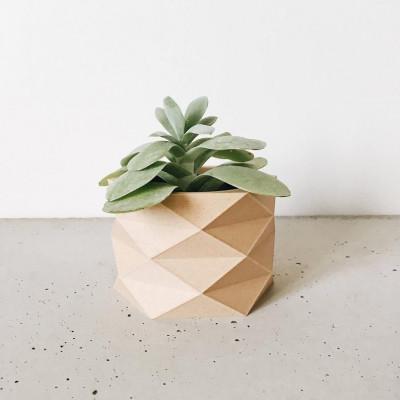Geometrische Holzpflanze Topfdiamant