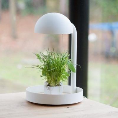 Full Moon Table Lamp | White