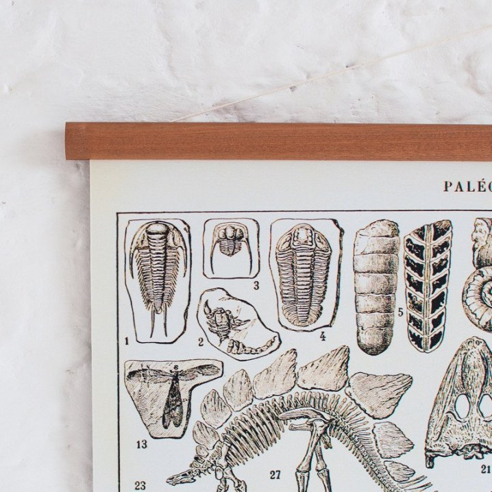 Vintage Poster Dinosaurier