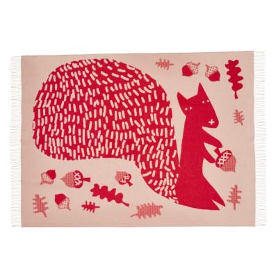 Decke | Eichhörnchen