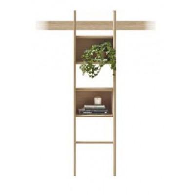 Zutik | Ladder