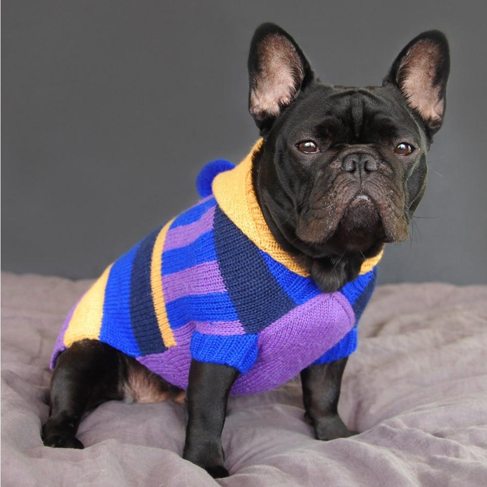 Electric Pompom Dog Sweater