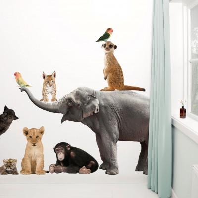 Wandsticker Safari Freunde | Elefant XL & Freunde