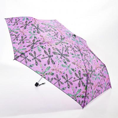 Regenschirm-Libelle | Violett