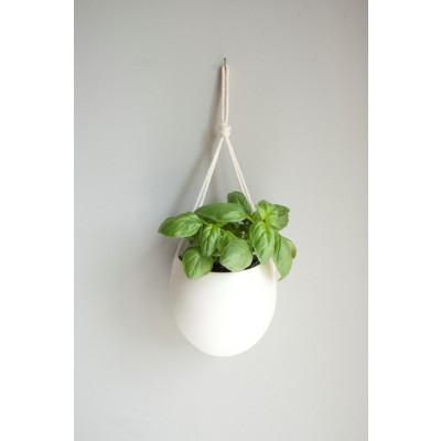 Hängepflanze aus Porzellan und Baumwollseil