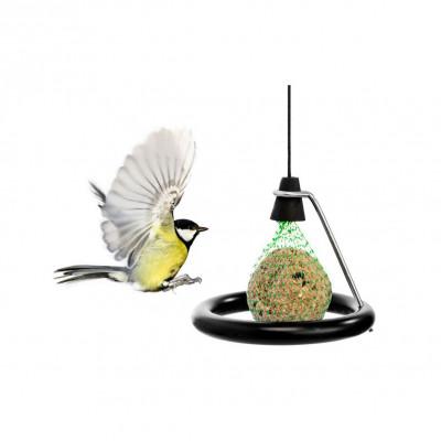 Mangeoire pour Oiseaux | Nichoir