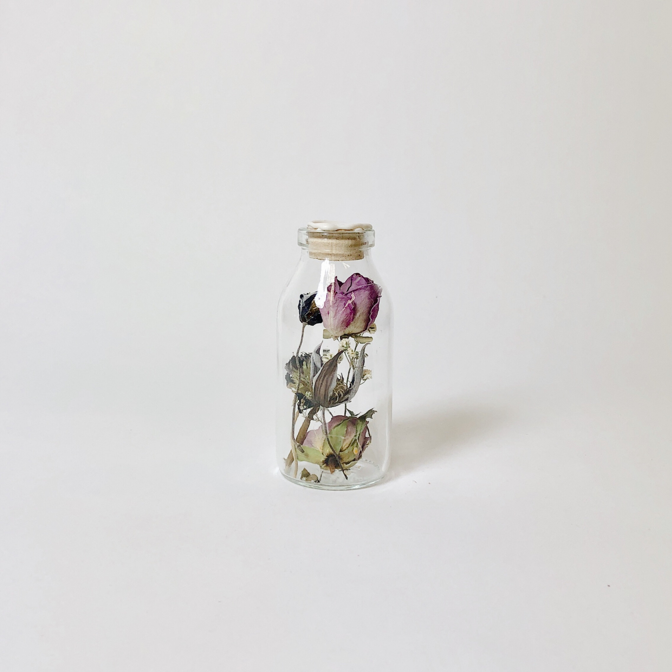 Flask with Dried Flowers   Harapan White