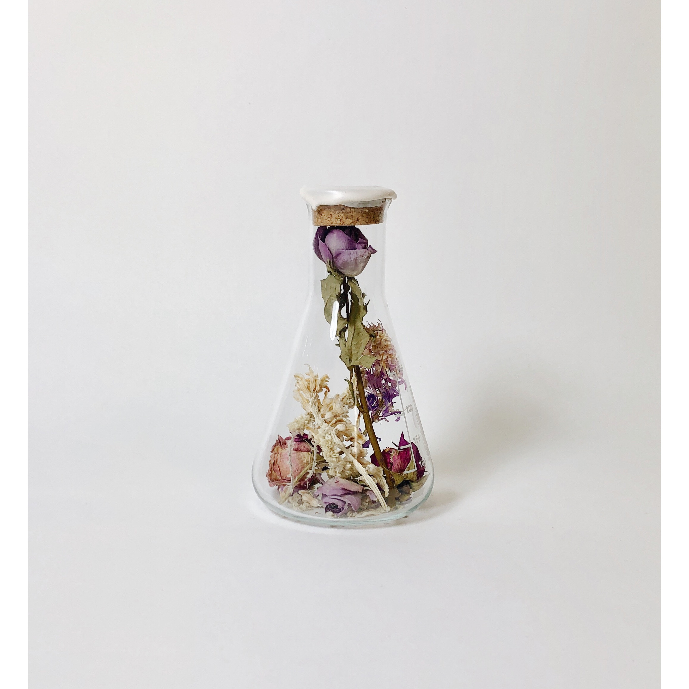 Erlenmeyer with Dried Flowers Large   Kibo White