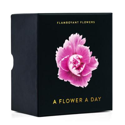 Photo Calendar Flamboyant Flowers