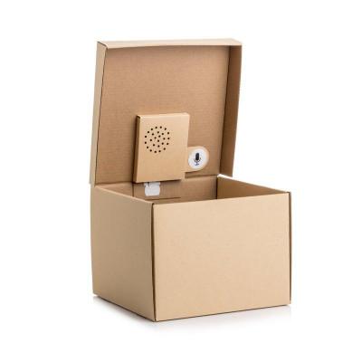 Geschenkbox mit Aufnehmbarer Nachricht