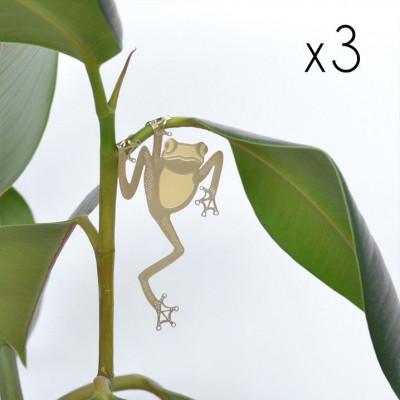 Plant Animals Set of Three | Frog / Chameleon / Bushbaby