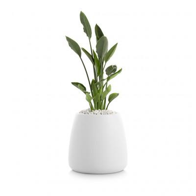 Pflanztopf Gobi 1 | Weiß