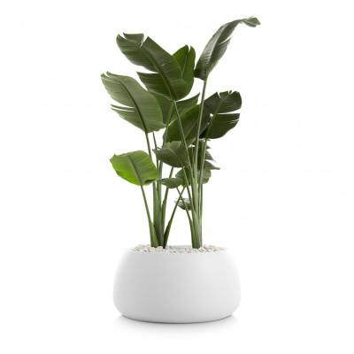 Pflanztopf Gobi 3 | Weiß