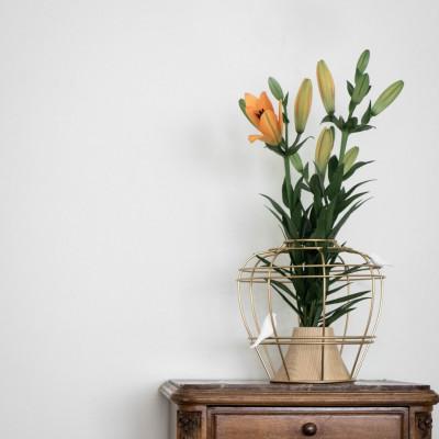 Vase Die neue alte Vase | Gold