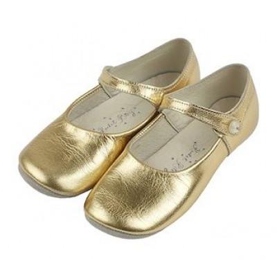 Goldener Leder-Parteischuh/Pantoffel