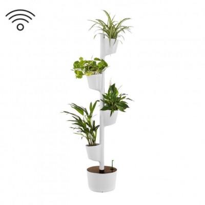 Smart & selbstbewässernd vertikale Pflanzgefäße | Grau - Dark Wood