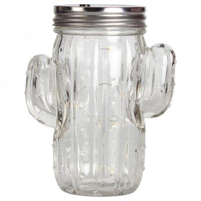 Cactus Lampion Jar | Transparent Glass