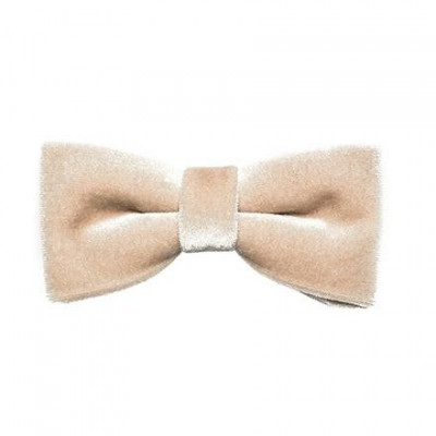 Bow Tie Heaven | Champagne Velours