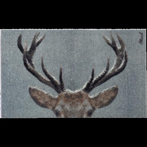 Hettie Scraper | 67 x 110 cm