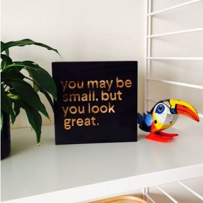 Blockquote | You May Be Small