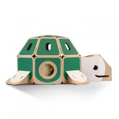 Turtle   Green-White