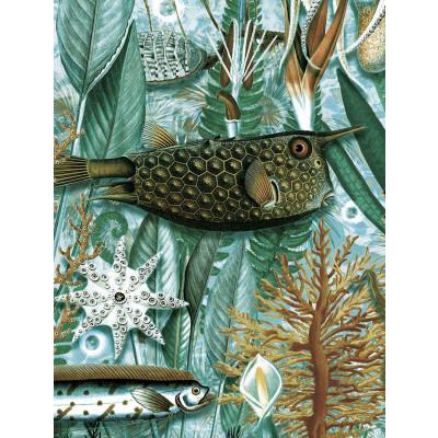 Wallpaper Underwater Jungle 4 Sheets | 688