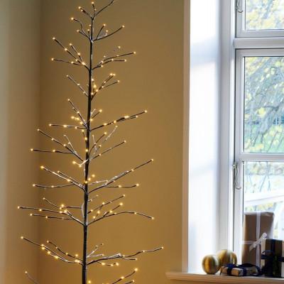 Weihnachtsbaum Isaac
