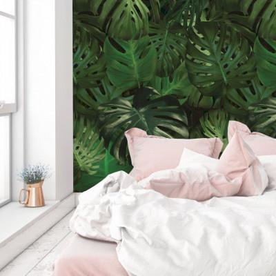 Wallpaper Botanical | Monstera Leaves